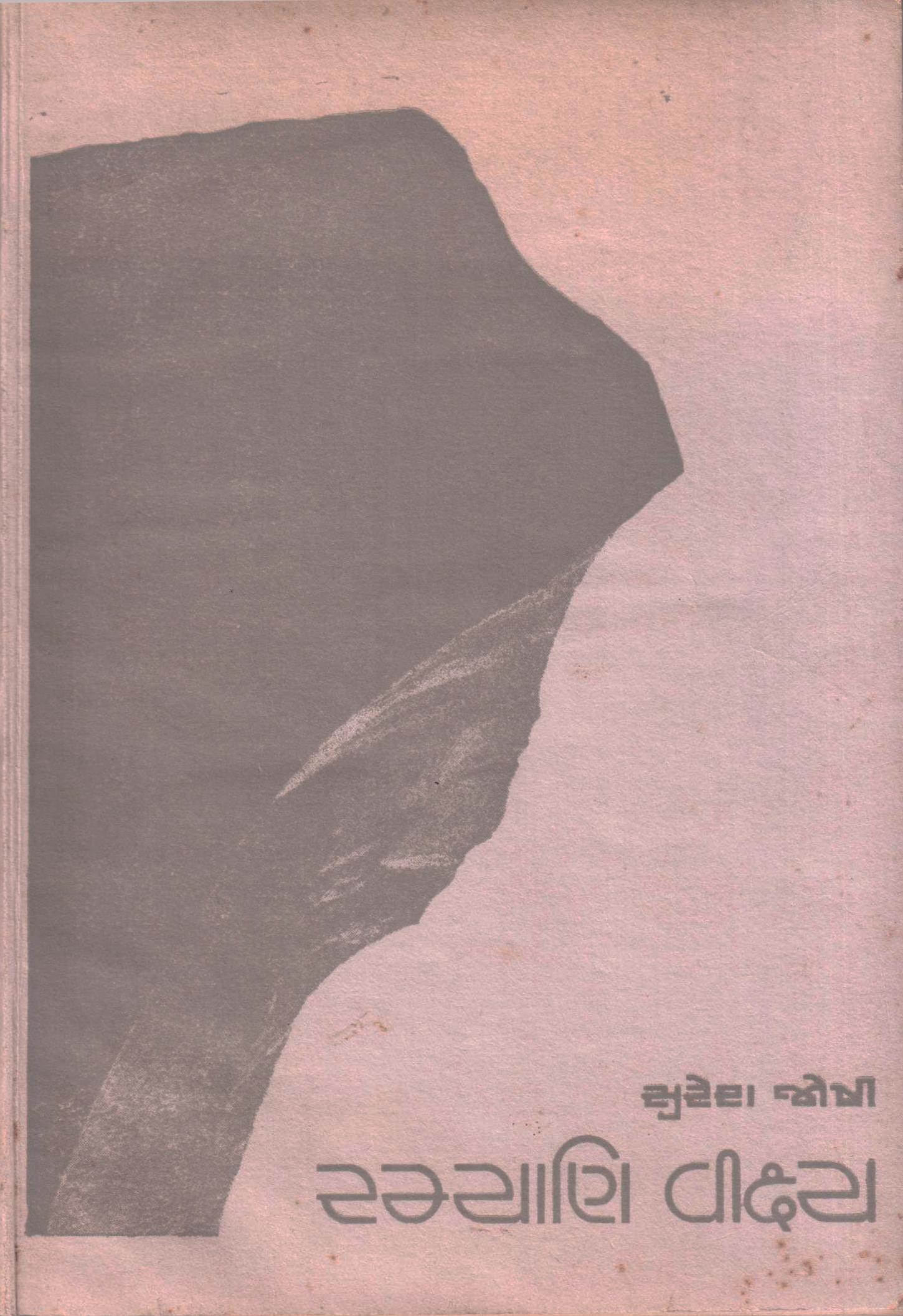 Cover image for રમ્યાણિ વીક્ષ્ય