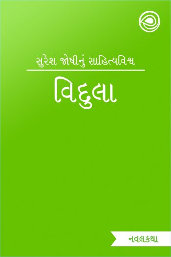 Cover image for વિદુલા