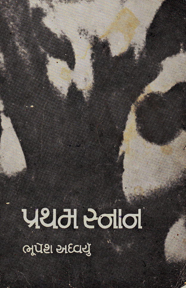 Cover image for પ્રથમ સ્નાન